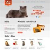 Cats Club_2