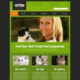 Kitten_11